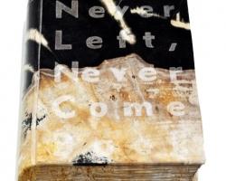 Desrat Fianda, Malin Kundang's Story, Never Left, Never Comes Back, 2017, fosil batu, 24,5 x 16,5 x 5 cm