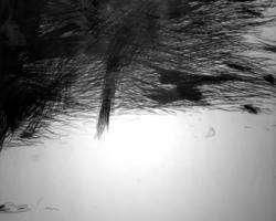 Douglas Diaz, Uncertainty, 2016, graphite on canvas, 200 x 180 cm
